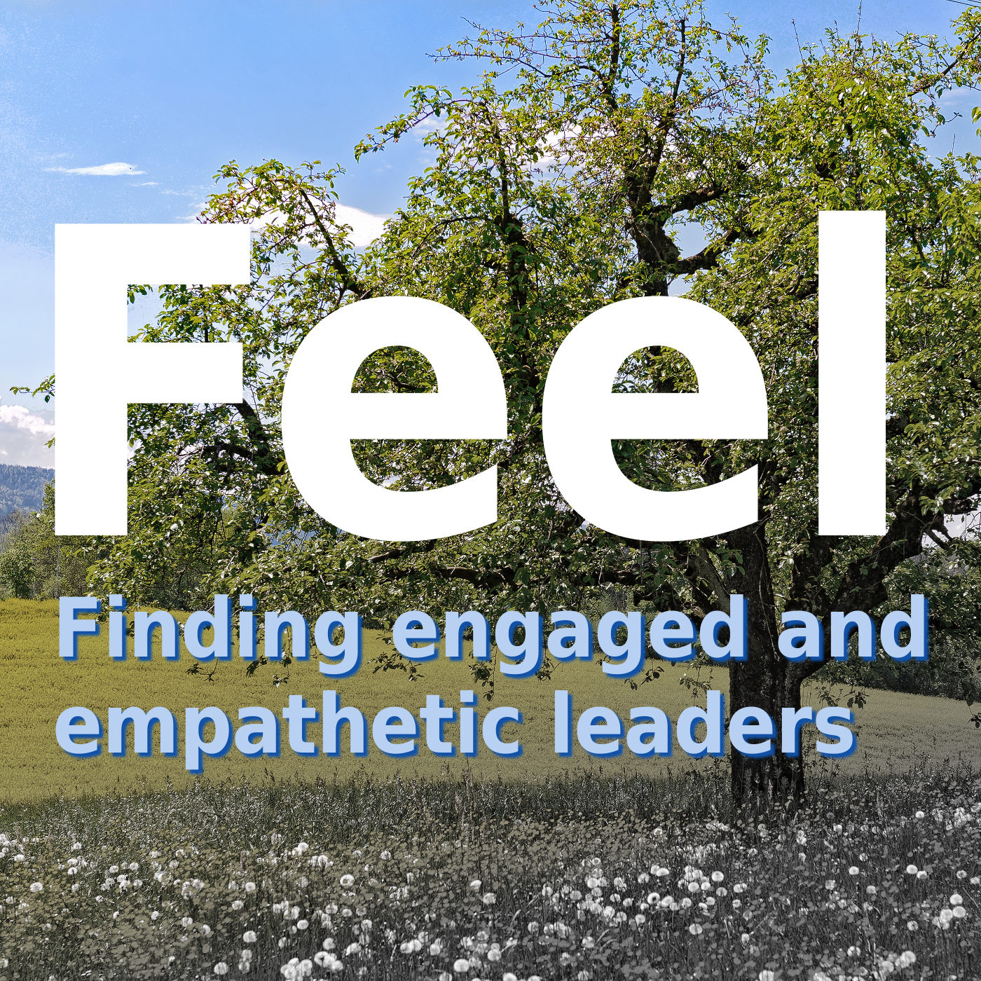 Feel - a podcast about leadership